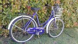 Bicicleta Harford (inglesa), rodado 26, VINTAGE