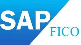 PACK SAP FI-CO R3 Y S4 HANA - CONTROLLER FINANCIERO E INNOVACION DE LA GESTION
