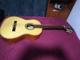 Guitarra acustica norato