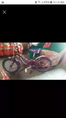 Bicicleta en exelente estado
