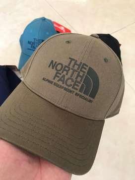 The north face original