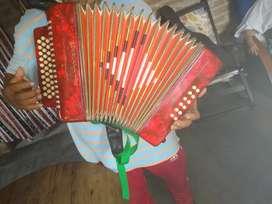 Acordeon instrumento musical