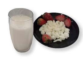 Kefir de leche. Hongo natural sin conservantes