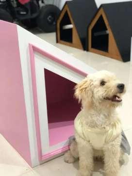 Casa para Perro, mascota