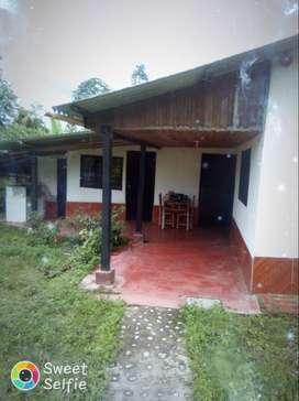 Vendo finca vía Timbío - Popayán
