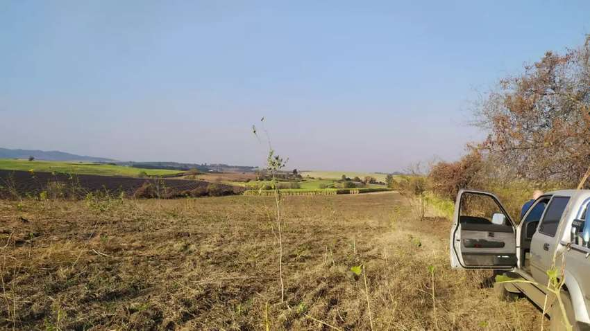 Terreno de 3,7 hectáreas. Vendo o permuto solo por terreno o propiedad en Tafi del Valle. 0