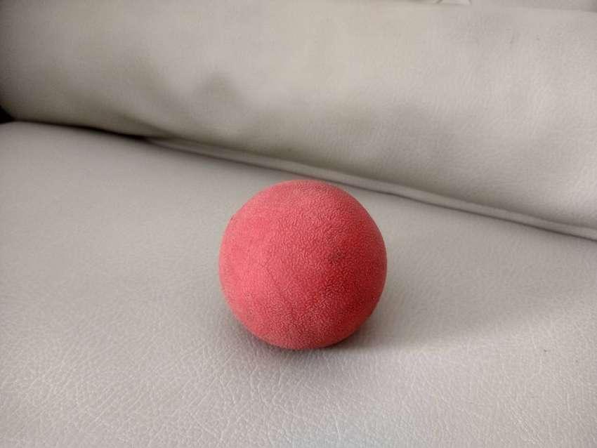 Bola pelota roja pesada y resistente para perro grande