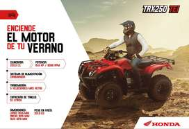 CUATRIMOTO TRX250 HONDA