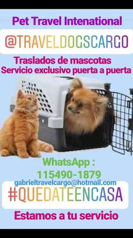 """"""" Travel Dogs Cargo """" Traslados de mascotas a todo el País"""