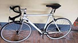 Bicicleta Gw Pista