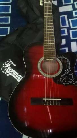 Instrumento de guitarra