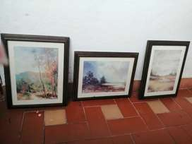 Set de cuadros  antiguos