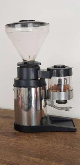 Molinode cafe Criollo