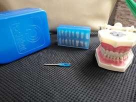 Macromodelo con dientes de ivorina. Ref pd-ag3