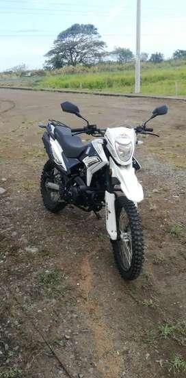 Vendo Ranger 250 gy