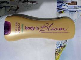 Crema body in bloom