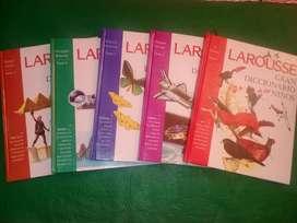 Diccionarios Larousse