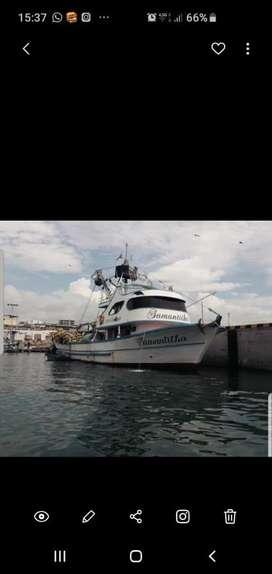 Barco sardinero con sistema de refigeracion en excelente estado