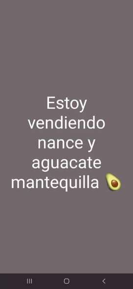 Vendo nance y aguacate mantequilla