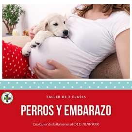 """Taller """"Perros y Embarazo"""""""