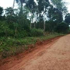 Dos terrenos en Puerto Iguazú, misiones