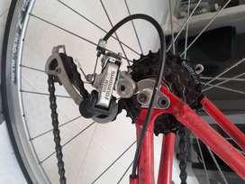 Bicicleta marco Gw