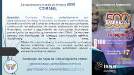 LIDER CONTABLE