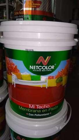 Membrana en pasta Netcolor x20 kg