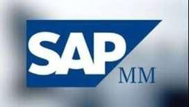 Videocurso de SAP MM