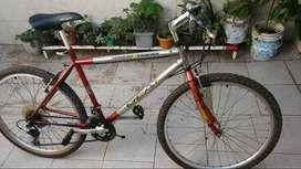 Bici Grande