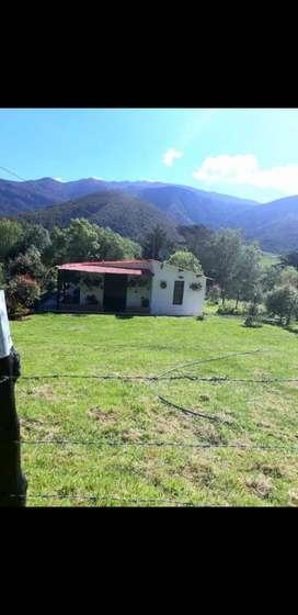 ALQUILO CASA CAMPESTRE POR DIAS, UBICADA EN LA VEREDA ISCALA SUR MUNICIPIO DE CHINÁCOTA