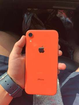 Iphone Xr (seminuevos)