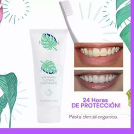 Crema dental