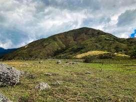En Venta Finca de 10 Hectareas en Vilcabamba