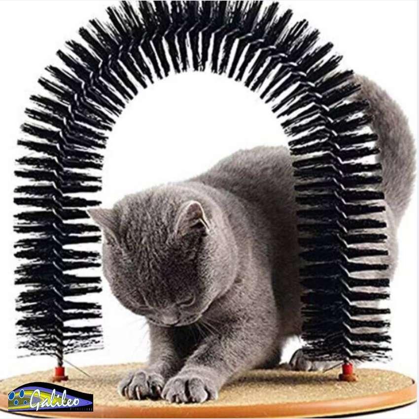 Arco Rascador para Gato