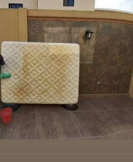 Limpieza de muebles, alfombras, sillas de comedor, colchones, limpieza de autos.