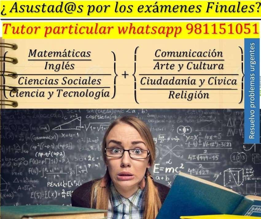 Tutor particular Nivel Universitario, Bachillerato, Secundaria, Primar 0