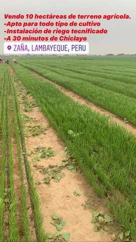 Hermoso terreno agrícola