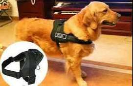 Pechera Para Perros Arnes Sports Dog Harness