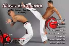 Capoeira . Arte marcial afro brasilero