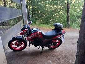 De oportunidad moto Daytona wing