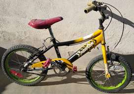Bici R16 Newton