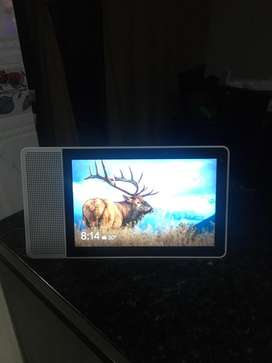 Google Home Smart Display