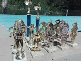 Trofeos de Natación.50 Cada Uno.
