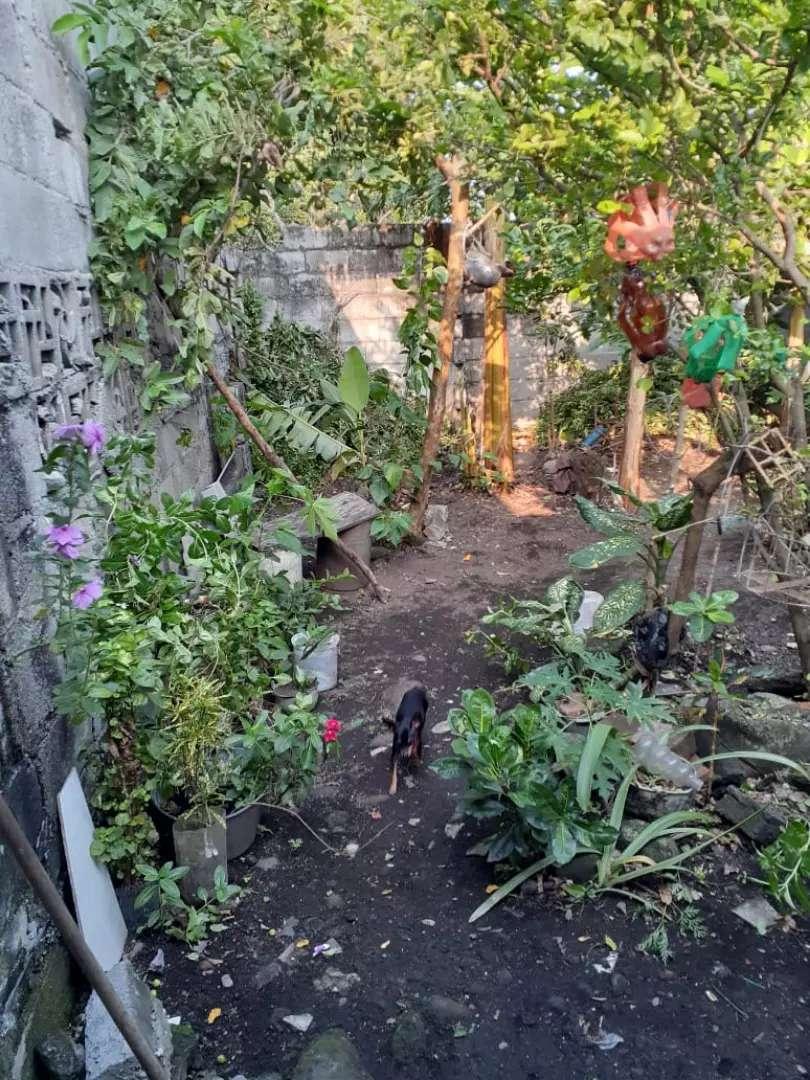 Casa en Mariquita tolima, 27 de fondo 5.5 de frente. Cerca del centro . 0