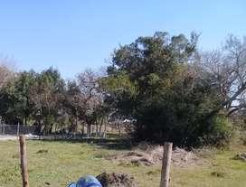 Se venden 3 terrenos en Goya . Corrientes
