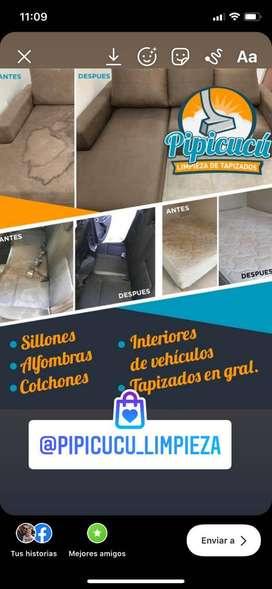 Limpieza de tapizados en gral y alfombras