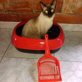 Arenero para Gato con  Pala