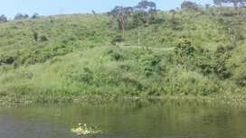 Se vende Propiedad que tiene 28 hectarias en el sector Represa Taguin
