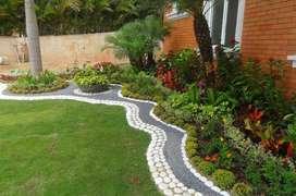 Establecimiento de prados y jardines